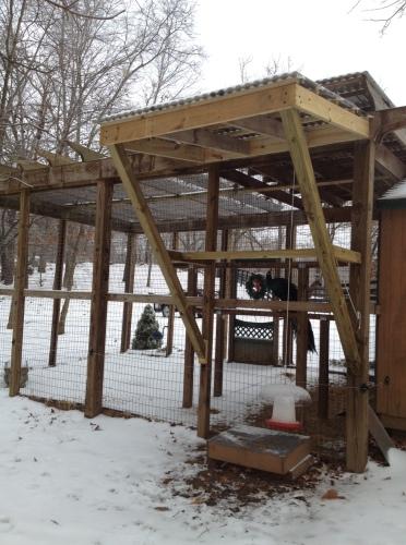 Farina's shelter
